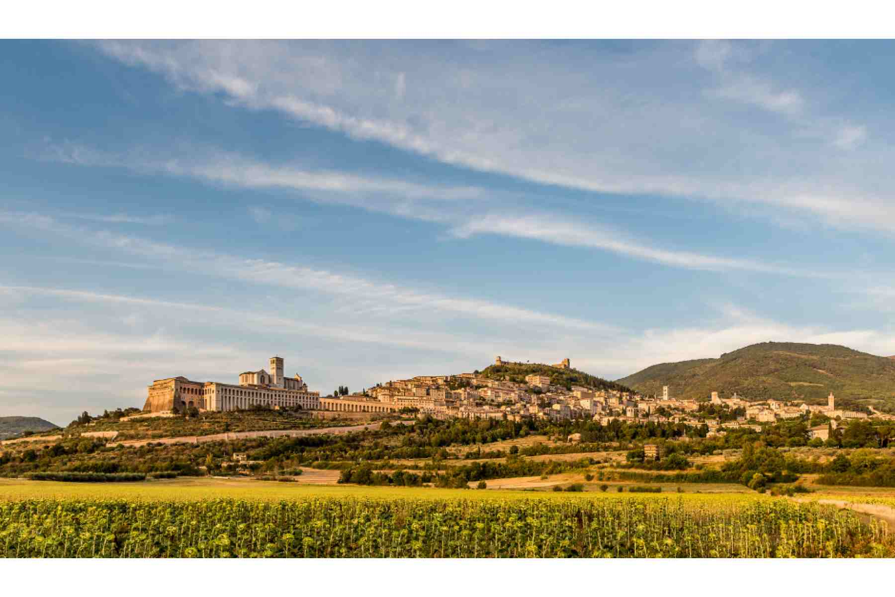 Symbolic Wedding in Assisi